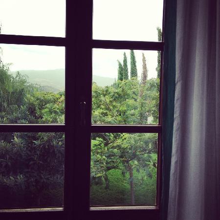 La Pieve: from the window of my bedroom
