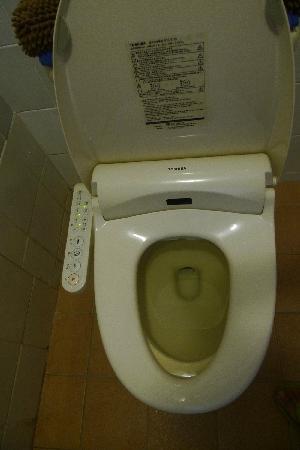Himawari Hotel: 马桶还配有立洗得