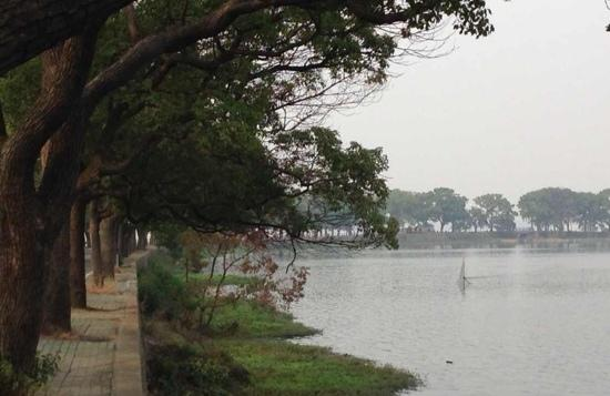 East Lake in Wuhan : 东湖湖畔