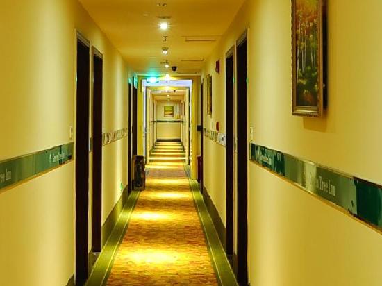 GreenTree Inn Hangzhou Qiutao Road Business Hotel: 走廊