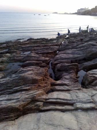 Xinghai Park : 海岸