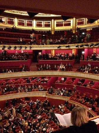 Théâtre des Champs-Élysées : 剧院