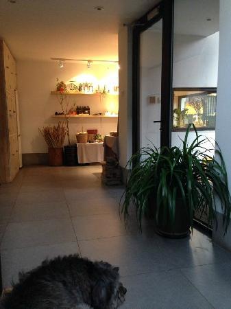 Beijing Wohkoon Hostel-Nan Luo Gu Xiang Branch: 大厅