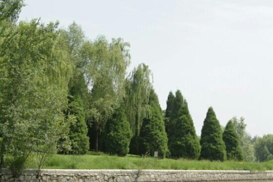 Chaoyang Park : 朝阳公园