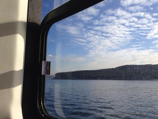 Sydney Ferries: 船上