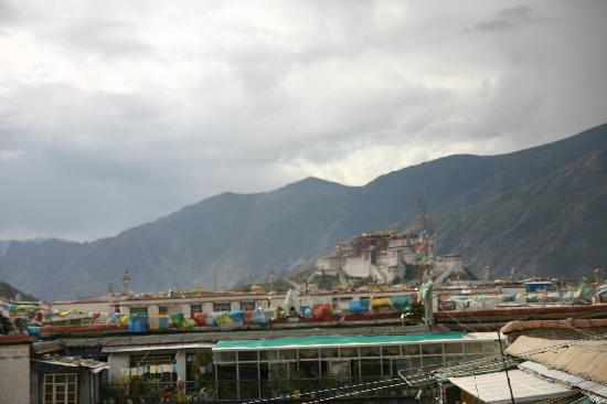 Dengba Hostel Lhasa : 屋顶看布宫
