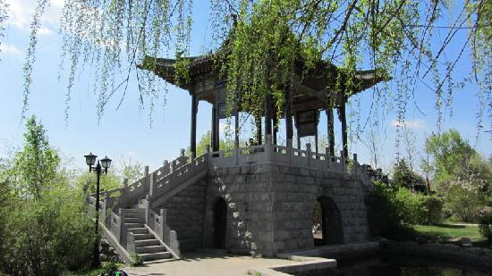 Shenyang International Horticultural Expo Garden: 一角
