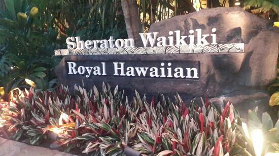 Sheraton Waikiki: 酒店门口