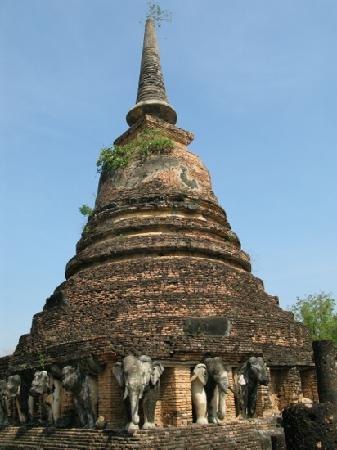 Wat Chang Lom : 大象托起的寺
