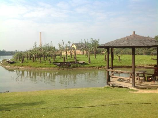 Zhongnan Baicao Garden: 风景