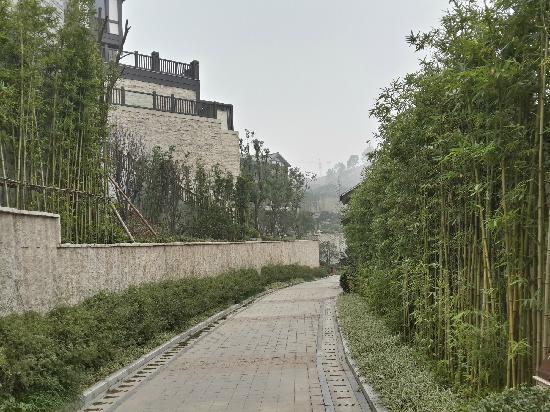 Banyan Tree Chongqing Beibei: 酒店内