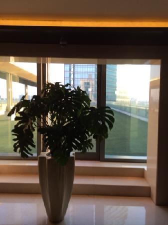 JW Marriott Hotel Beijing: 电梯厅一角