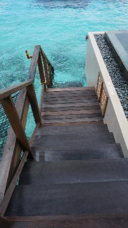 AYADA Maldives: 水屋楼梯直接下海浮潜