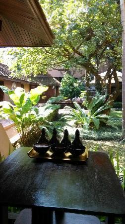 Oasis Spa Lanna: 从大厅里看庭院
