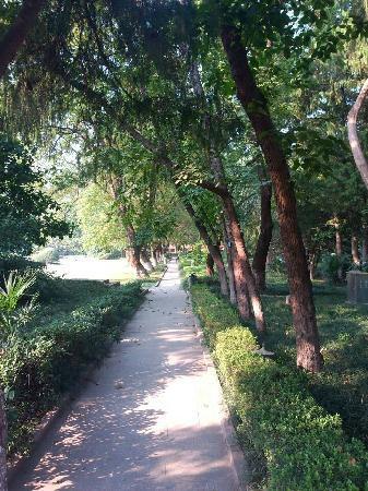 Hefei University Of Science And Technology Of China: 操场边的小道