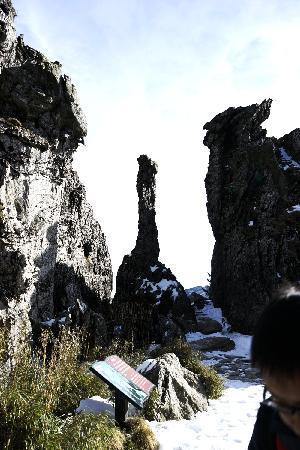 Shennongding National Nature Reserve: 神农架15