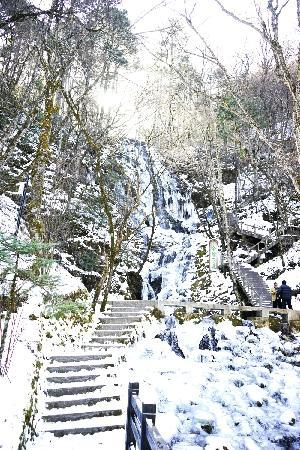 Shennongding National Nature Reserve: 神农架17