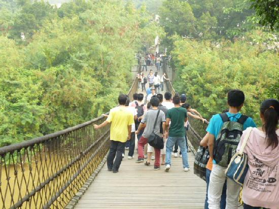 Liangfeng River Forest Park of Nanning: 良凤江森林公园