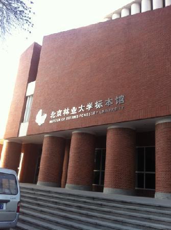 BeiJing LinYe DaXue BiaoBenGuan