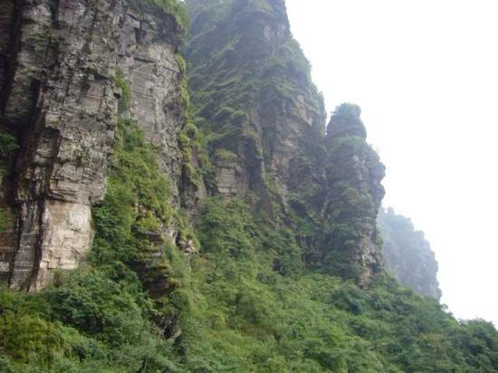Mount Fanjing : 好