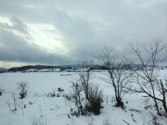 Daxinganling Mohe County : 雪后漠河