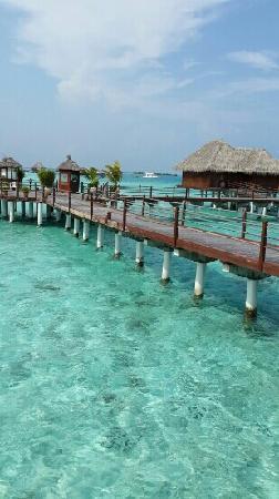 Sun Aqua Vilu Reef: vilu reef