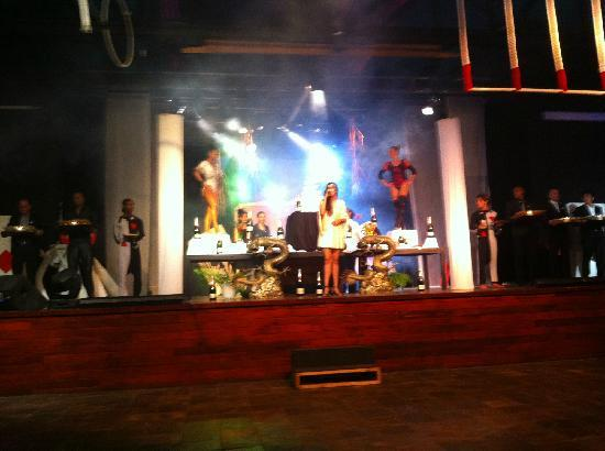 Club Med Albion Villas - Mauritius: 剧场