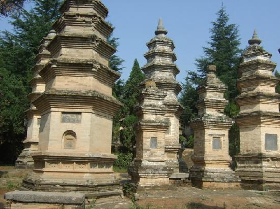 Pagoda Forest of Shaolin Temple: 1