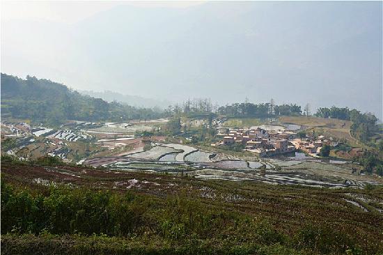 Yuanyang County, China: 情迷龙树坝