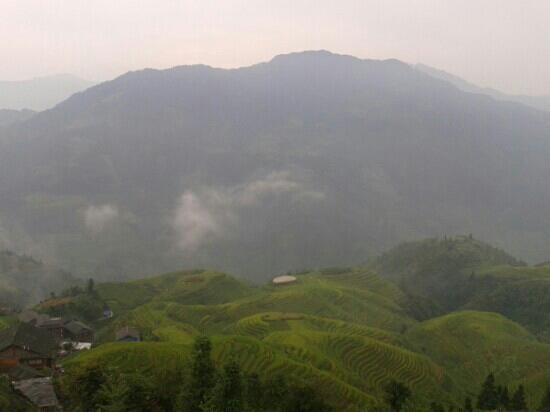 Long Sheng's Dragon Spine Rice Terraces: 美不胜收的龙胜梯田