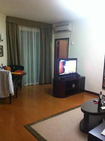 Springdale Serviced Residence Guangzhou : living room
