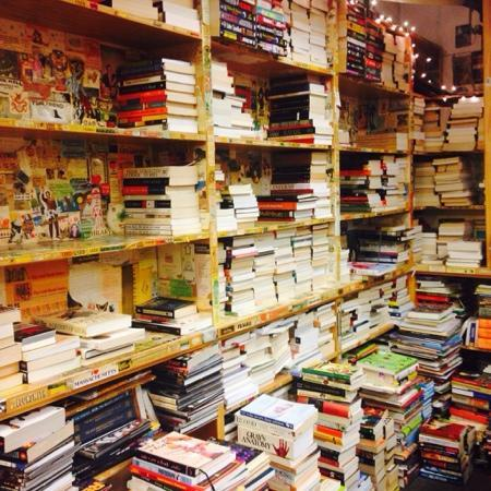 Harvard Book Store: 哈佛書店