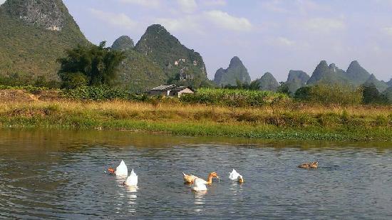 Yangshuo West Street Residence : 美丽的阳朔山水