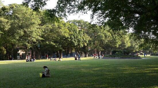 Sun Yat-sen University : 中山大学南草坪