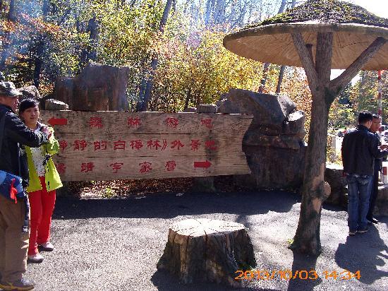 Huadian, Chine : 门口的广告牌
