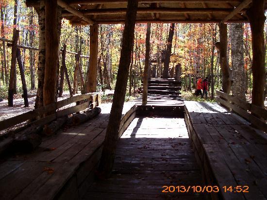 Huadian