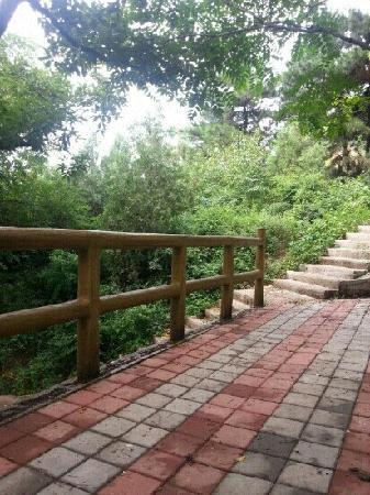 Daxing'anling, Kina: 北山