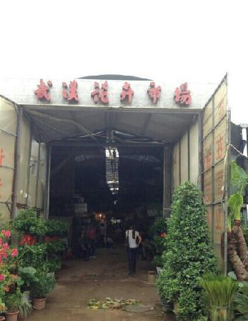 Wuhan flower Market