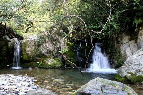 Shennongding National Nature Reserve: 神农架