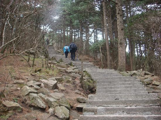 Mt. Huangshan (Yellow Mountain): 1
