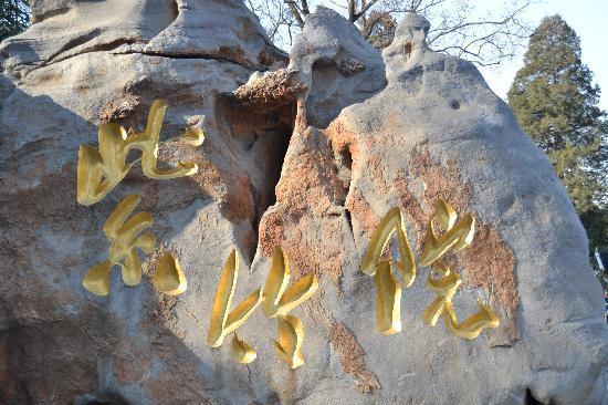 Zizhuyuan Gongyuan (Black Bamboo Park) : 紫竹院