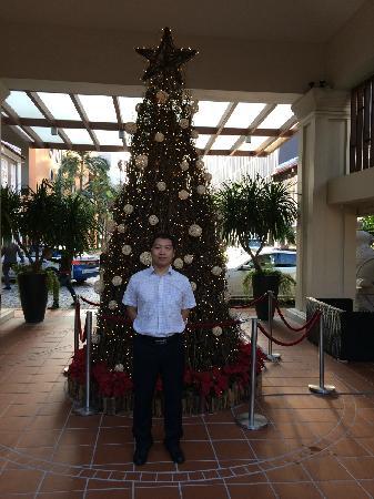 Village Hotel Albert Court by Far East Hospitality: 门口的圣诞树