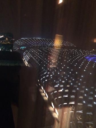 Hotel Kapok Shenzhen : 窗外景色