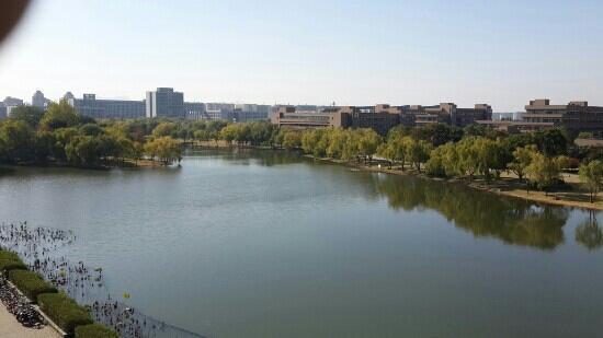 Zhejiang University: 启真湖