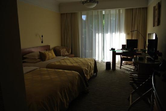 Guanfang Hotel: 房间内部