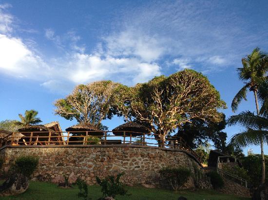 Le Chateau de Feuilles: 园景