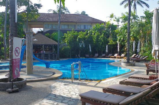 Coconut Village Resort : 泳池