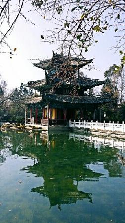 Black Dragon Pond Park: 黑龙潭公园