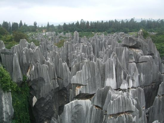 1 Day Private Tour To Stone Forest and Jiuxiang Cave: stone