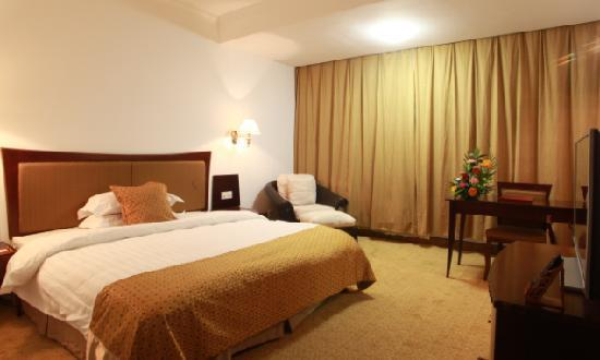 Baodao Conference & Exhibition Center Hotel : 酒店套房